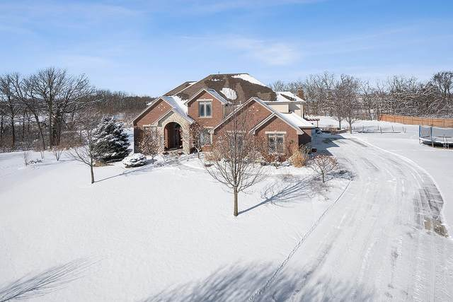 13340 W Valley View Drive, Homer Glen, IL 60491 (MLS #10643143) :: RE/MAX IMPACT