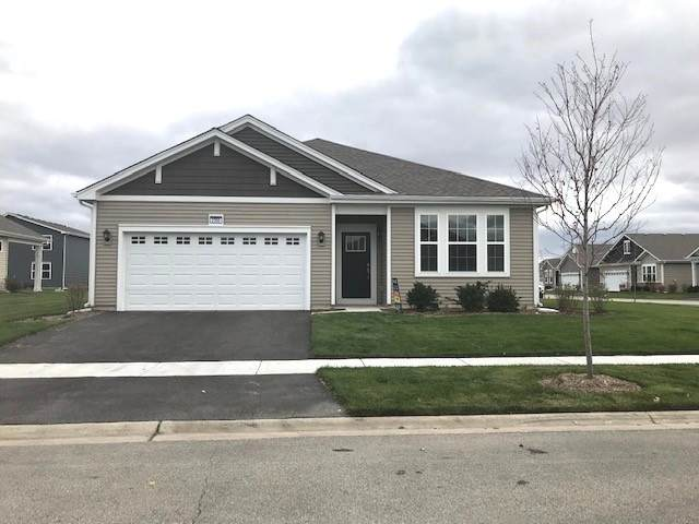 2350 Cannon Drive, Pingree Grove, IL 60140 (MLS #10643251) :: The Wexler Group at Keller Williams Preferred Realty