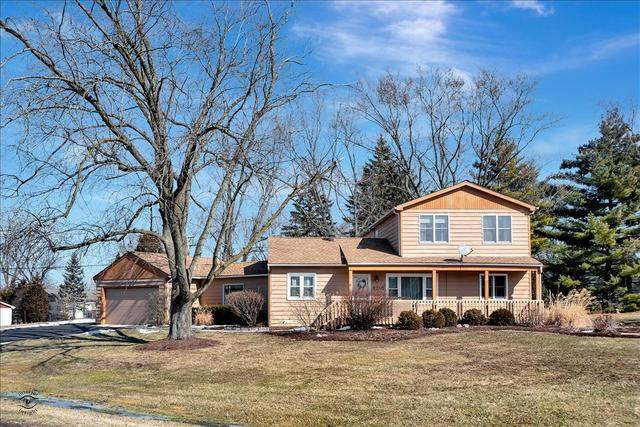 8240 Paloma Drive, Orland Park, IL 60462 (MLS #10643394) :: RE/MAX IMPACT