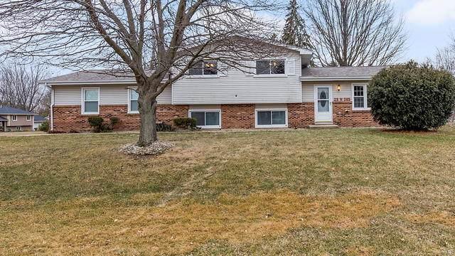 29W085 Wagner Road, Naperville, IL 60564 (MLS #10643407) :: Ryan Dallas Real Estate