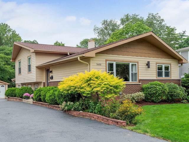 5600 Carpenter Street, Downers Grove, IL 60516 (MLS #10643438) :: Ryan Dallas Real Estate