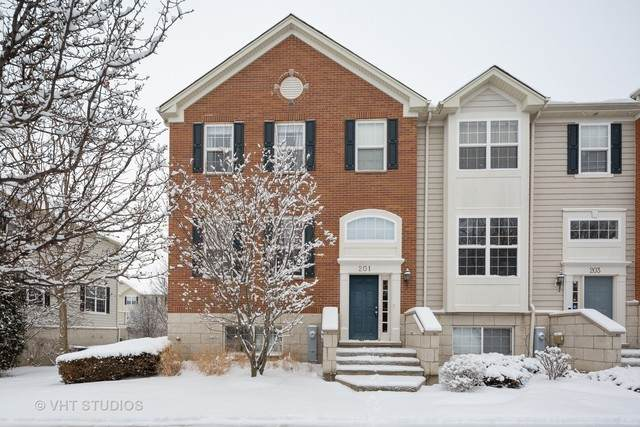 201 Comstock Drive, Elgin, IL 60124 (MLS #10643549) :: Touchstone Group