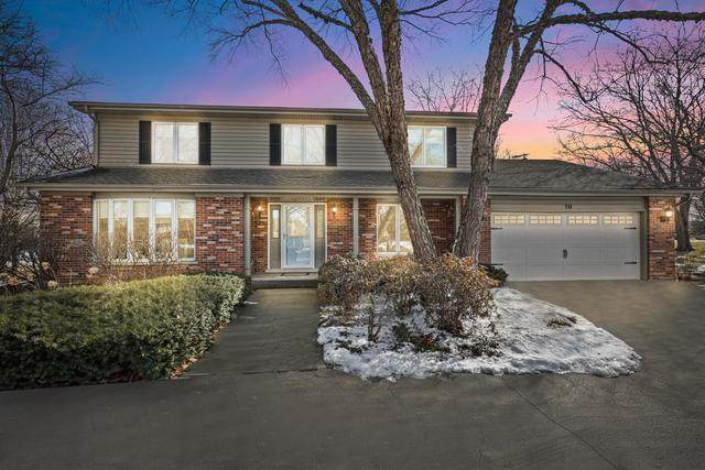 10 Darlington Drive, Hawthorn Woods, IL 60047 (MLS #10643831) :: Touchstone Group