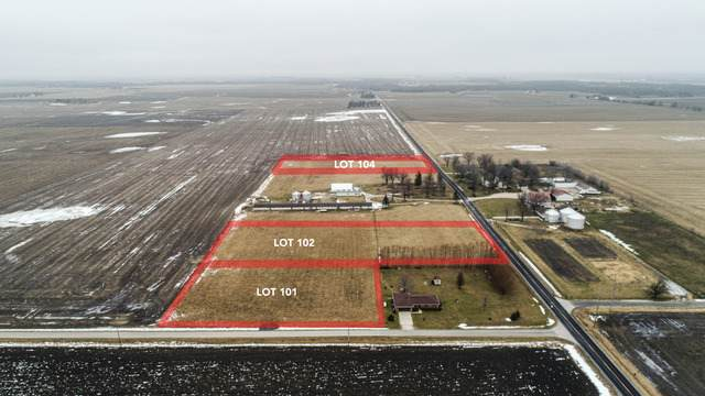 LOT 101 County Road 600 Road, Fisher, IL 61843 (MLS #10643855) :: Littlefield Group