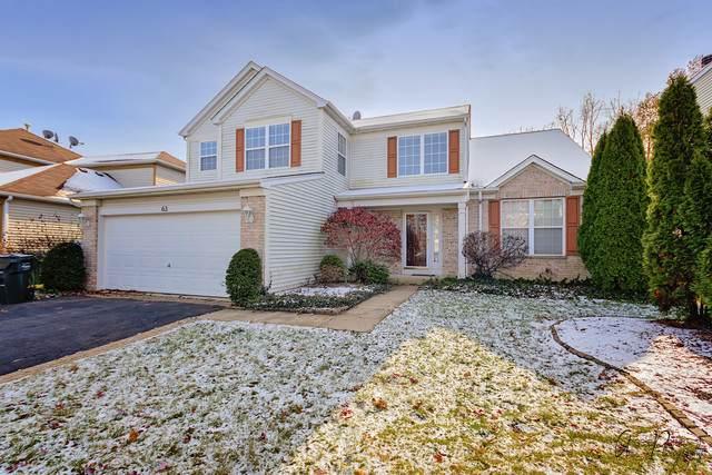 63 W Tall Oak Drive, Hainesville, IL 60073 (MLS #10643862) :: Lewke Partners