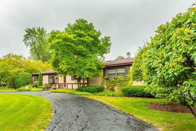 411 W Marion Street, Prospect Heights, IL 60070 (MLS #10643935) :: John Lyons Real Estate