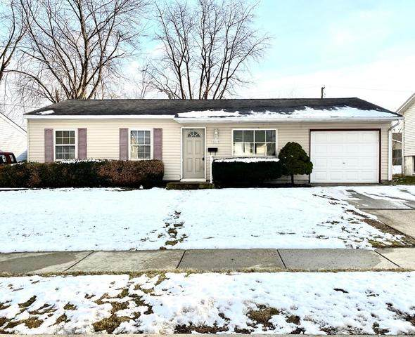 217 Healy Avenue, Romeoville, IL 60446 (MLS #10644019) :: Angela Walker Homes Real Estate Group