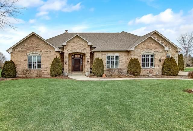 10N850 Williamsburg Drive, Elgin, IL 60124 (MLS #10644090) :: Helen Oliveri Real Estate