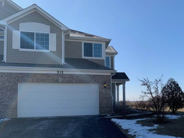 515 Fort Clatsop Court, Joliet, IL 60431 (MLS #10644206) :: The Wexler Group at Keller Williams Preferred Realty