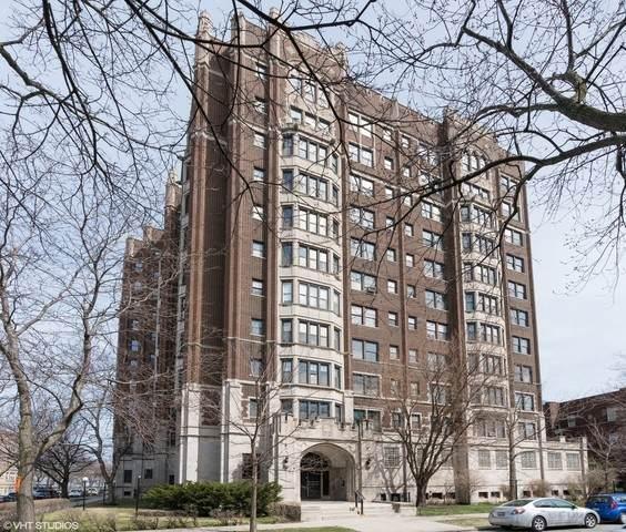 6901 S Oglesby Avenue 7D, Chicago, IL 60649 (MLS #10644339) :: Angela Walker Homes Real Estate Group