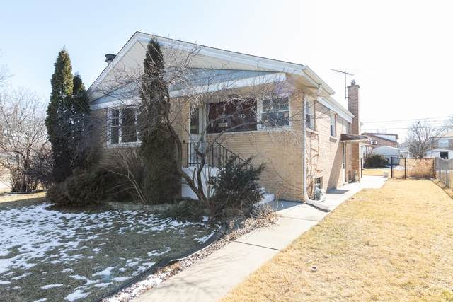 4501 W 123rd Place, Alsip, IL 60803 (MLS #10644507) :: Property Consultants Realty