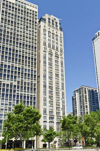 1242 N Lake Shore Drive 13S, Chicago, IL 60610 (MLS #10644533) :: Ryan Dallas Real Estate