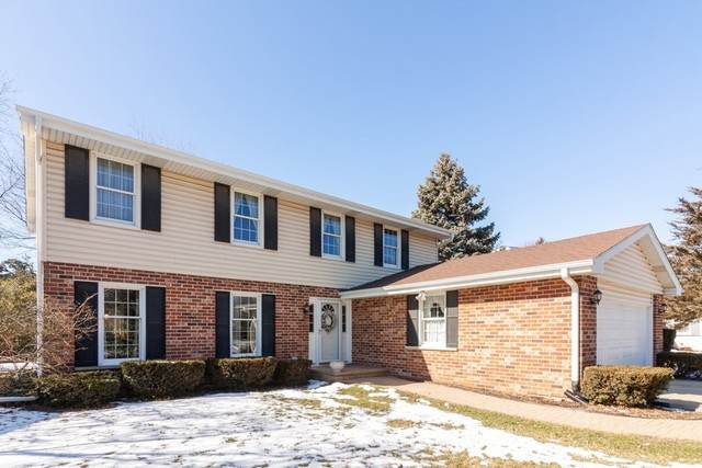 7628 Rohrer Drive, Downers Grove, IL 60516 (MLS #10644542) :: The Wexler Group at Keller Williams Preferred Realty