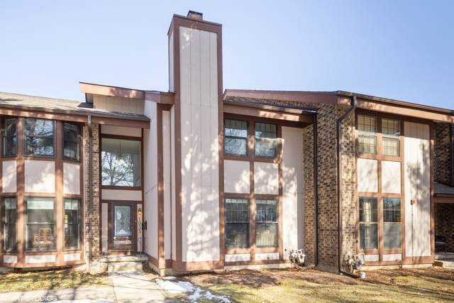 1035 E Benton Avenue, Naperville, IL 60540 (MLS #10644881) :: The Dena Furlow Team - Keller Williams Realty