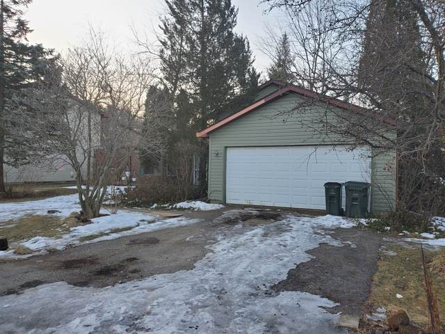 2371 Grass Lake Road, Lindenhurst, IL 60046 (MLS #10645031) :: Property Consultants Realty