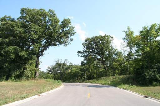LOT#11 Oak Grove Court, Morris, IL 60450 (MLS #10645138) :: The Wexler Group at Keller Williams Preferred Realty