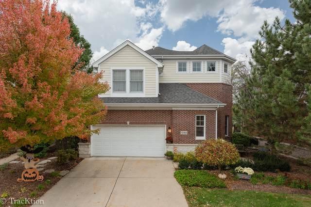 1248 Lake Shore Drive, Lisle, IL 60532 (MLS #10645237) :: Angela Walker Homes Real Estate Group