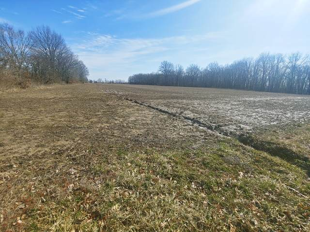 274 N 1900 East Road, Greenup, IL 62428 (MLS #10645393) :: Berkshire Hathaway HomeServices Snyder Real Estate