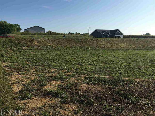 Lot 25 Raef Road, Downs, IL 61736 (MLS #10645649) :: BN Homes Group