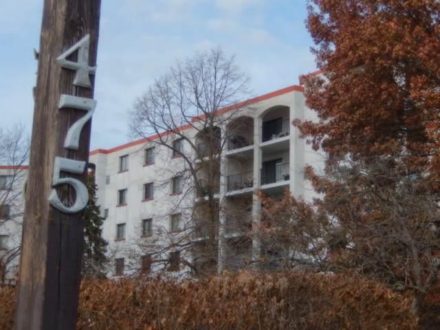 475 Plum Creek Drive #504, Wheeling, IL 60090 (MLS #10645698) :: Helen Oliveri Real Estate
