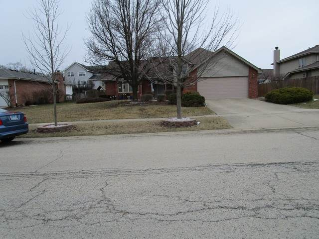 407 Navajo Drive, New Lenox, IL 60451 (MLS #10646373) :: The Wexler Group at Keller Williams Preferred Realty