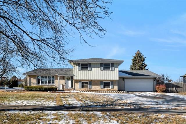 8818 Juniper Court, Tinley Park, IL 60487 (MLS #10646376) :: The Wexler Group at Keller Williams Preferred Realty