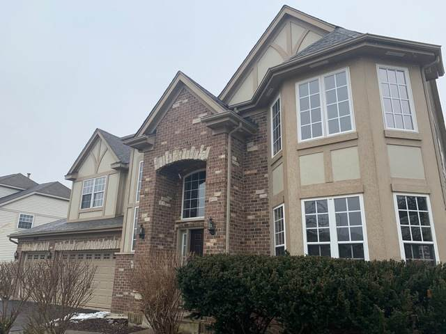 26317 Mapleview Drive, Plainfield, IL 60585 (MLS #10646420) :: The Wexler Group at Keller Williams Preferred Realty
