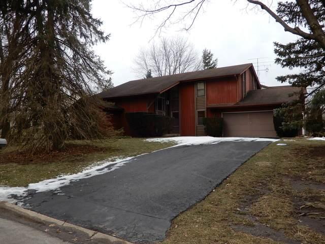 2445 Sun Valley Road, Lisle, IL 60532 (MLS #10646466) :: John Lyons Real Estate
