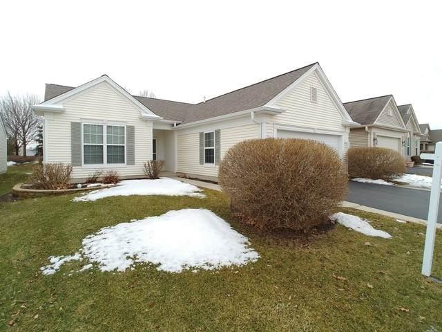 13707 Kirkland Drive, Huntley, IL 60142 (MLS #10646664) :: John Lyons Real Estate