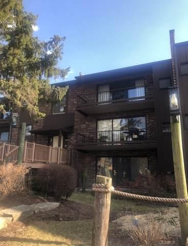 61 Pier Drive #302, Westmont, IL 60559 (MLS #10646676) :: Helen Oliveri Real Estate