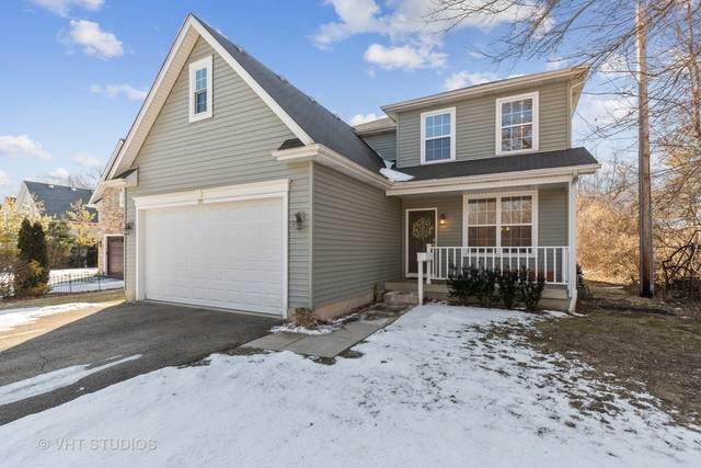 219 Elm Avenue, Mundelein, IL 60060 (MLS #10646784) :: Helen Oliveri Real Estate