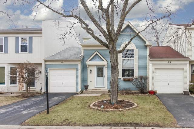 322 W Birchwood Avenue #322, Palatine, IL 60067 (MLS #10646816) :: Century 21 Affiliated