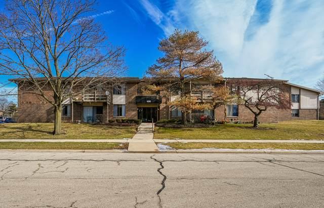 456 Raintree Court 2A, Glen Ellyn, IL 60137 (MLS #10646837) :: The Mattz Mega Group