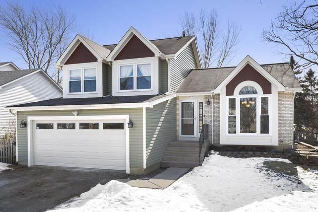 2043 Oaktree Trail, Lake Villa, IL 60046 (MLS #10646922) :: Property Consultants Realty