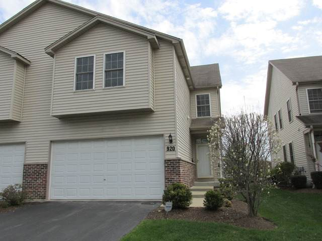 920 Case Street, Naperville, IL 60563 (MLS #10647263) :: BN Homes Group