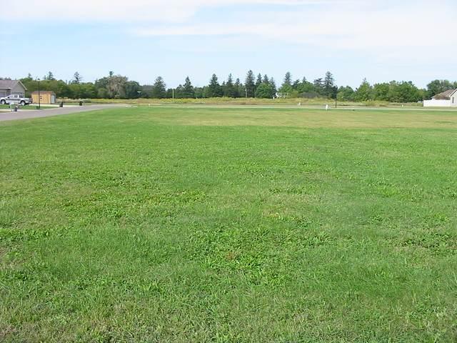 395 Ator Avenue, Lasalle, IL 61301 (MLS #10647301) :: Ryan Dallas Real Estate