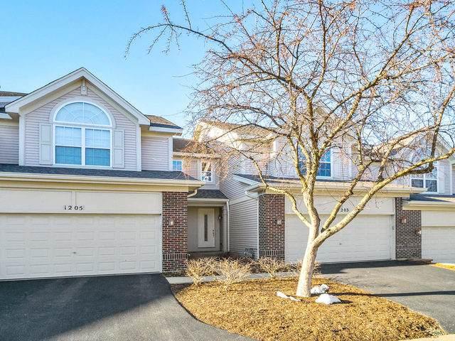 1203 Townes Circle, Aurora, IL 60502 (MLS #10647359) :: BN Homes Group
