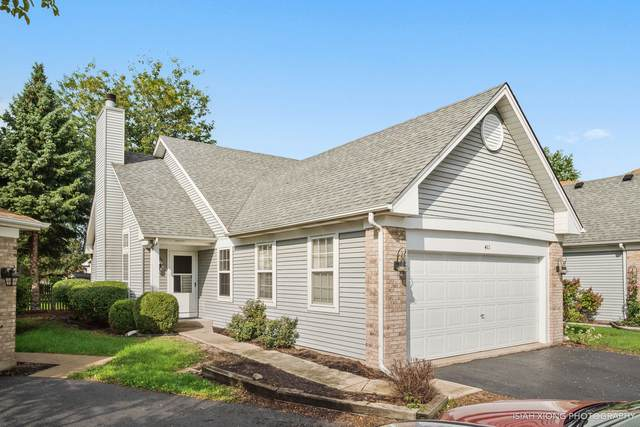 411 Prairieview Drive, Oswego, IL 60543 (MLS #10647434) :: The Wexler Group at Keller Williams Preferred Realty