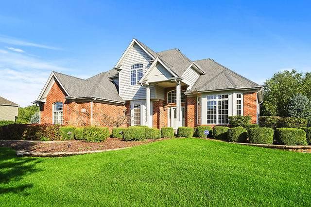 3815 Landsdown Avenue, Naperville, IL 60564 (MLS #10647551) :: Ryan Dallas Real Estate