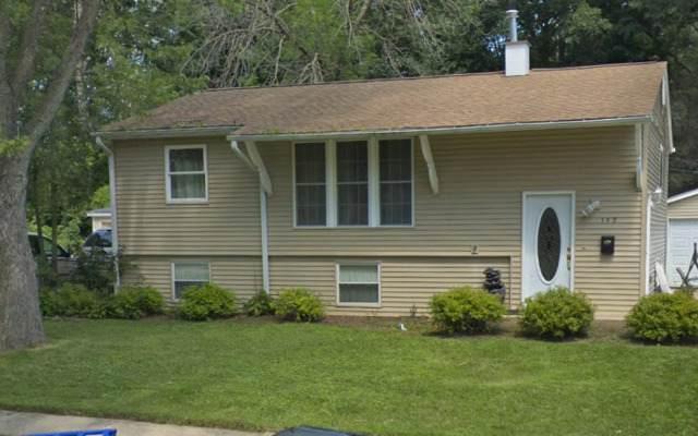 390 Tee Lane, Carpentersville, IL 60110 (MLS #10647586) :: Janet Jurich