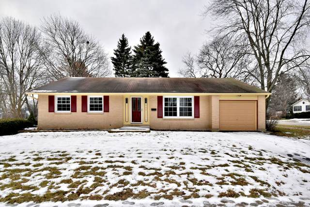 907 W Braeside Drive, Arlington Heights, IL 60004 (MLS #10647672) :: Angela Walker Homes Real Estate Group