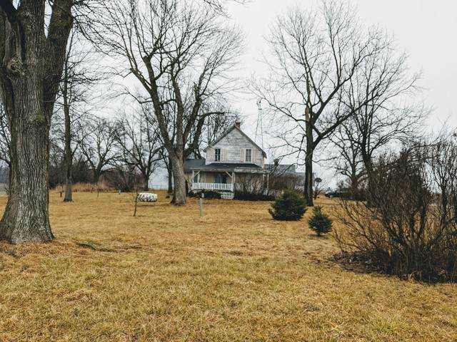 8702 N 2400 E Road N, Forrest, IL 61741 (MLS #10647889) :: Ryan Dallas Real Estate