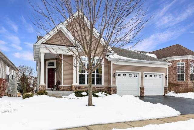 3875 Seigle Drive, Elgin, IL 60124 (MLS #10647920) :: Property Consultants Realty