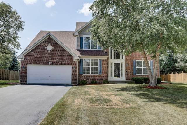 460 Tenby Way, Algonquin, IL 60102 (MLS #10648206) :: Angela Walker Homes Real Estate Group