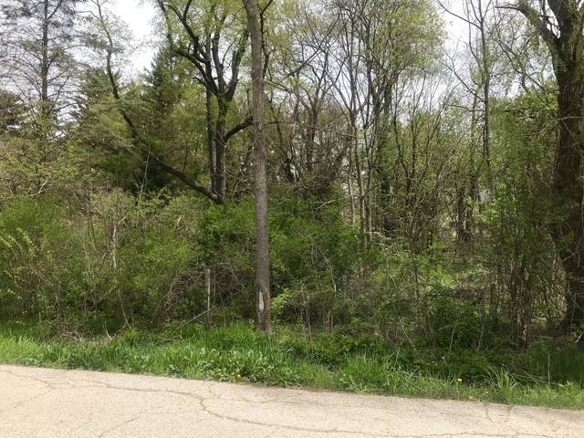 Lot A Illinois Street, Crystal Lake, IL 60014 (MLS #10648461) :: Property Consultants Realty