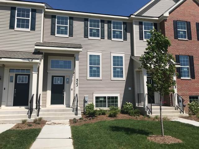 577 Cimmaron Circle, Crystal Lake, IL 60012 (MLS #10648527) :: Property Consultants Realty