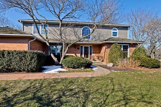 5 Karen Court, Hawthorn Woods, IL 60047 (MLS #10648599) :: Helen Oliveri Real Estate