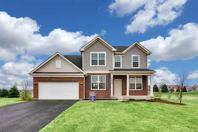 4323 Conifer Road, Naperville, IL 60564 (MLS #10648627) :: Ryan Dallas Real Estate