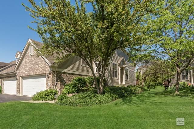 141 River Mist Drive, Oswego, IL 60543 (MLS #10648954) :: John Lyons Real Estate