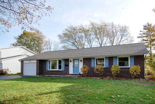 719 W Berkley Drive, Arlington Heights, IL 60004 (MLS #10649060) :: Helen Oliveri Real Estate